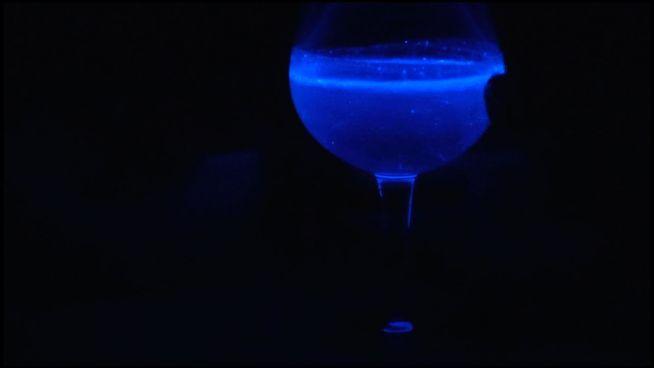 Leuchtend & lecker: Cocktails mit Plankton